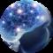 EBRSR blue brain